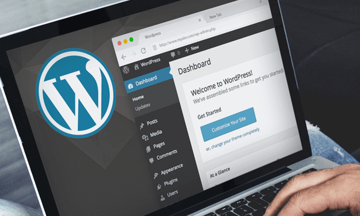 Man using WordPress