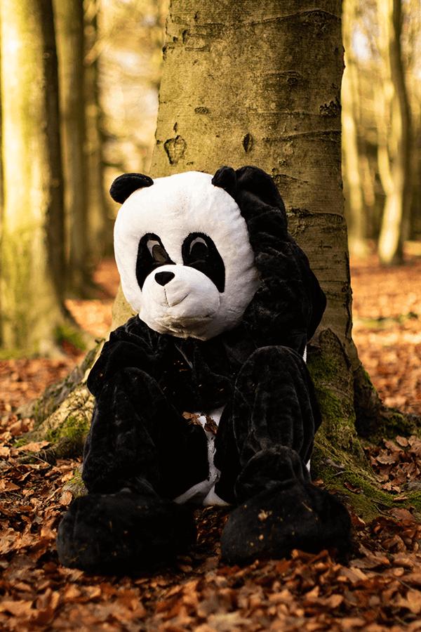 Panda costume in wood
